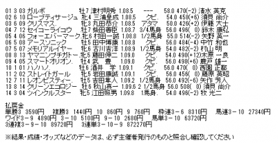 【函館スプリントS】冬馬がこの季節に復活走!中団後ろ追走ガルボがゴール前で抜け出し重賞4勝目!