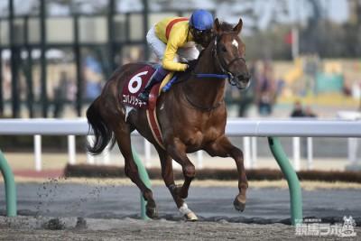 【競馬】東海S(中京・G2) 2番手追走コパノリッキー4角先頭から直線突き放し圧勝!