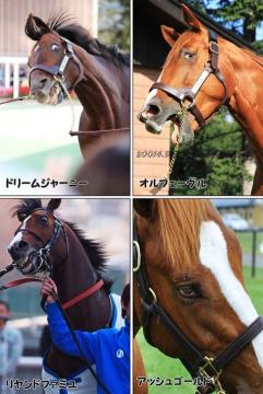 オルフェーヴル・ドリームジャーニーの全妹、2歳牝馬エストソルシエールが重度の蹄葉炎で安楽死 デビューを迎えることはできず