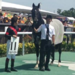 日本ダービー・有力馬 シルバーステート屈腱炎発症 長期休養へ
