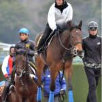 藤田菜七子騎手 G1馬の妹に乗れるかも!?フェノーメノ半妹でゲート試験合格