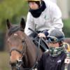 藤田菜七子騎手に厳しい現実… 良血馬の騎乗依頼されるも馬主の意向で破談に…