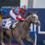 武豊騎手騎乗のラニが優勝 UAEダービー