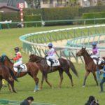 藤田菜七子騎手にエージェントが付くことが決定。騎乗馬が多く集まる可能性も。