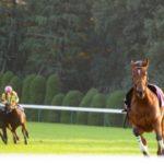 角居勝彦調教師 「放馬」が競走馬にもたらす功罪