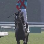 14年ダービー馬・ワンアンドオンリーが引退、種牡馬入り