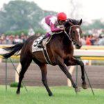 1998年ダービー馬スペシャルウィーク、放牧中の事故で死ぬ 牡23歳 武豊騎手「一生忘れられない馬です」 GI4勝