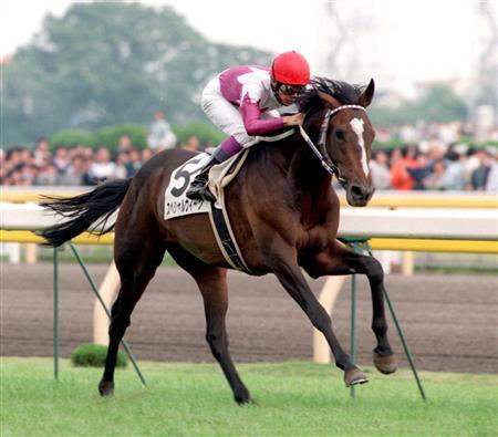 mnewsplus 1524847445 101 - 1998年ダービー馬スペシャルウィーク、放牧中の事故で死ぬ 牡23歳 武豊騎手「一生忘れられない馬です」 GI4勝