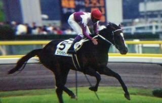 mnewsplus 1524847445 17303 - 1998年ダービー馬スペシャルウィーク、放牧中の事故で死ぬ 牡23歳 武豊騎手「一生忘れられない馬です」 GI4勝