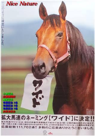mnewsplus 1525933989 8001 - 満30歳のナイスネイチャを支援するキャンペーンが実施中 有馬記念で3年連続3着