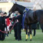 北島三郎が競り落としていた「第二のキタサンブラック」 ロードカナロア産駒を4200万円で落札