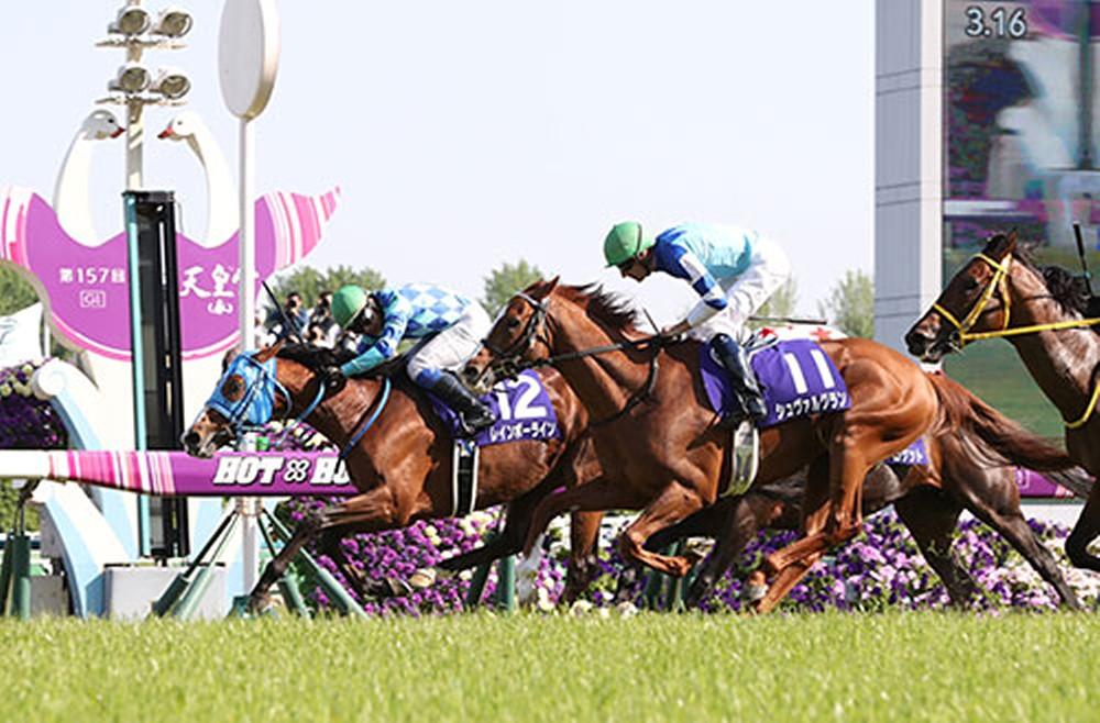 mnewsplus 1528245531 101 - 天皇賞・春を制したレインボーライン、引退して種牡馬入り