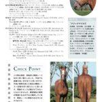 目黒記念を制したウインテンダネスを生産したアサヒ牧場「生まれた当初から良い馬で期待していました」