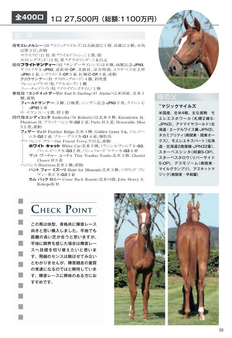 mnewsplus 1528702872 701 - 目黒記念を制したウインテンダネスを生産したアサヒ牧場「生まれた当初から良い馬で期待していました」