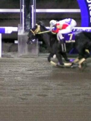 mnewsplus 1541151246 202 - ホッカイドウ競馬で誤審!北海道2歳優駿で1、2位の着順を逆に!