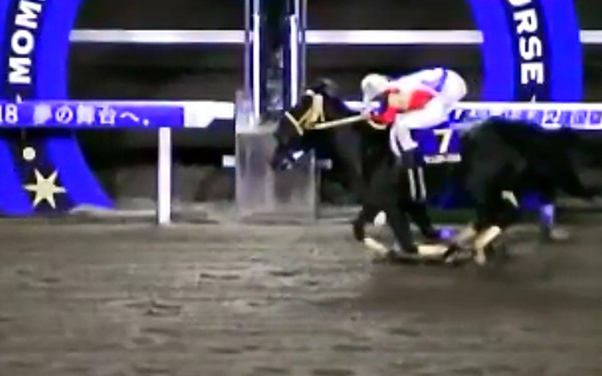 mnewsplus 1541151246 203 - ホッカイドウ競馬で誤審!北海道2歳優駿で1、2位の着順を逆に!