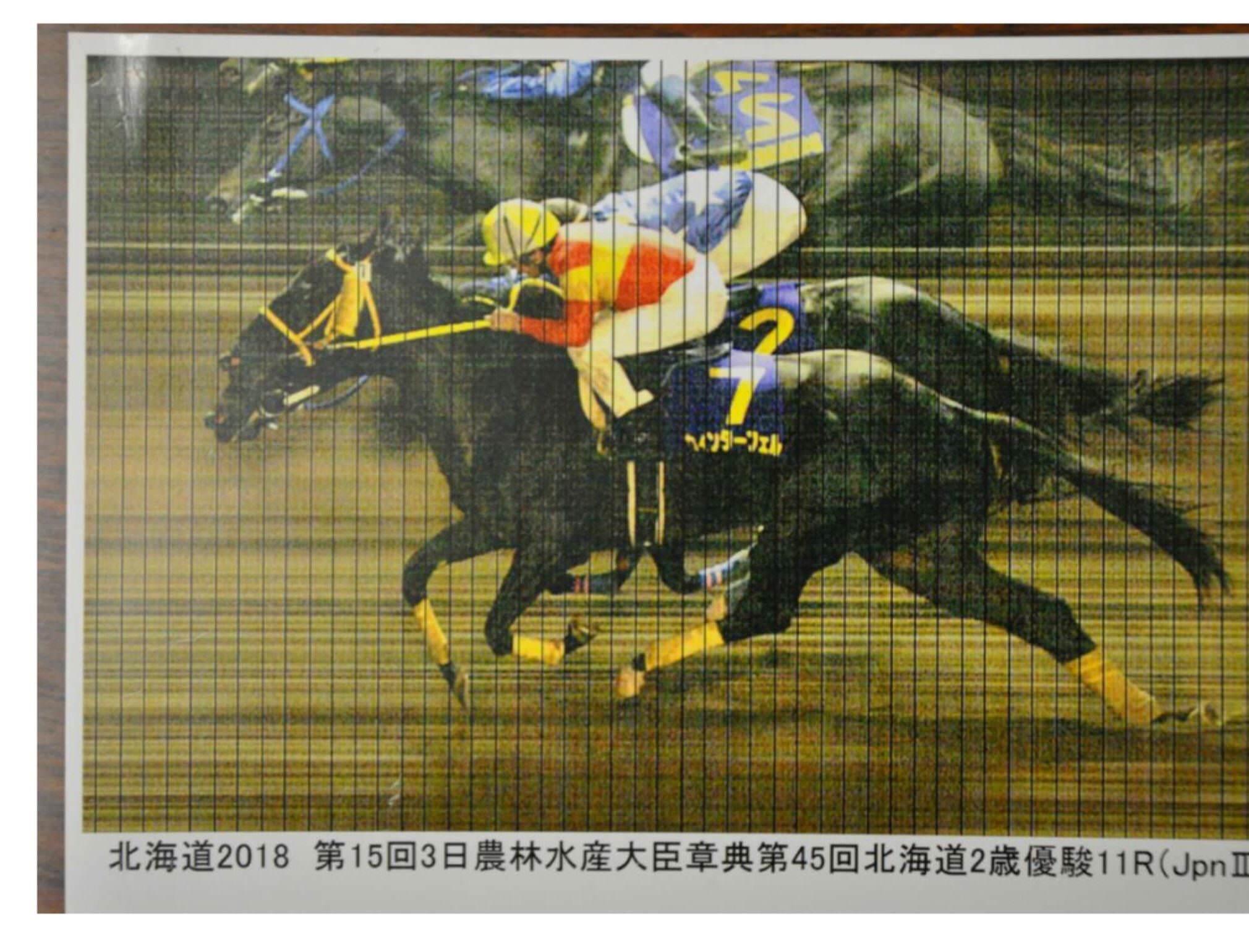 mnewsplus 1541151246 503 - ホッカイドウ競馬で誤審!北海道2歳優駿で1、2位の着順を逆に!