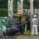 豪騎手が暴れた馬を殴打、「不十分すぎる」処分に非難の声