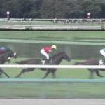 クリストフ・ルメール騎手が2月3~11日まで開催4日間の騎乗停止 京都記念のレイデオロ鞍上はダリオ・バルジュー騎手に