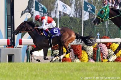 浜中俊騎手が秋華賞でJRA年間100勝を達成